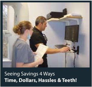 K90003D_dentists_expertise_root_canals_traverse_city_mi